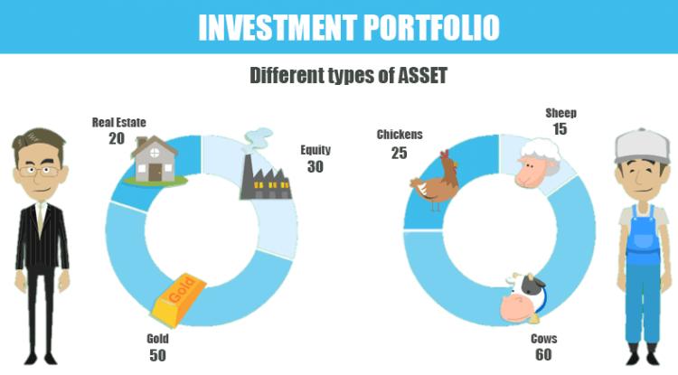 investment portfolio typologies