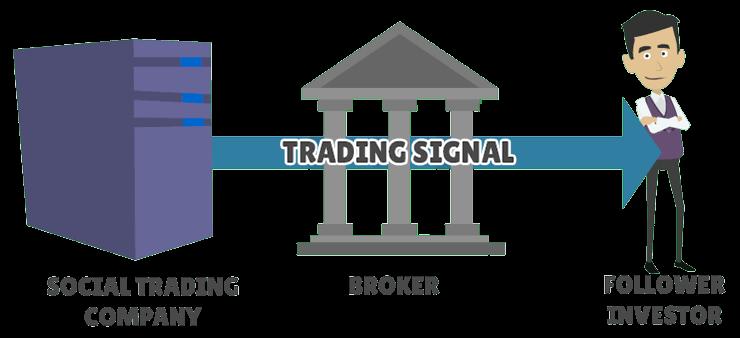 social trading signals receipt