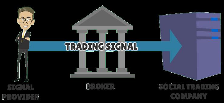 social trading signals replication process