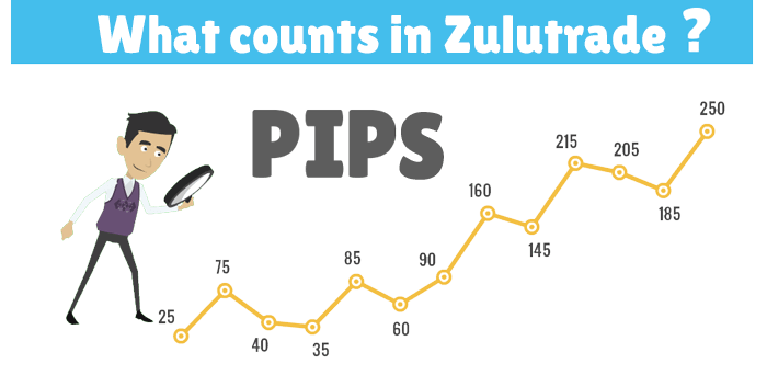 in zulutrade only pips count